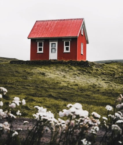 Red house on top of hill and white flowers