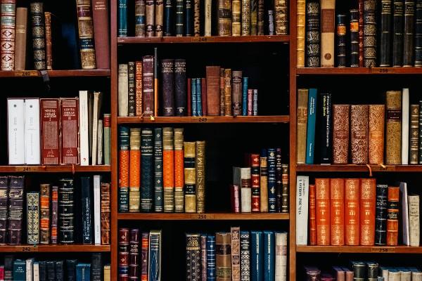 Bookshelf with leather bound books